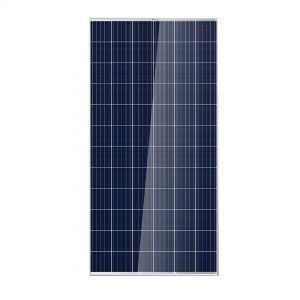 solar services within newcastle